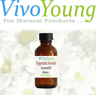 50ml Pure and Undiluted Peppermint Arvensis Essential Oil, Packed in UK