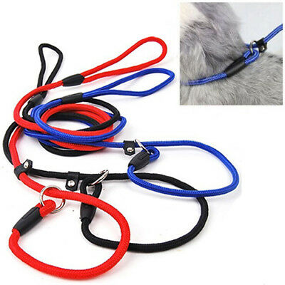 Pet Dog Nylon Rope Leash Slip Lead Strap Adjustable Traction Collar HOT Reliable