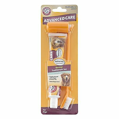 Arm and Hammer Advanced Dental Care Kit Toothbrush Set for Dogs