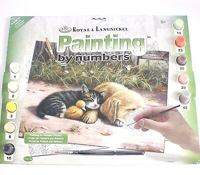 ✨ Paint By Numbers Kit Puppy Kitten ~ Cats Dogs Royal & Langnickel Animal Art ✨