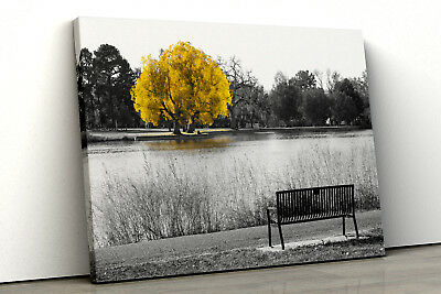 Large Yellow tree black white Home Decor Nature Framed Canvas Print Wall Art 116