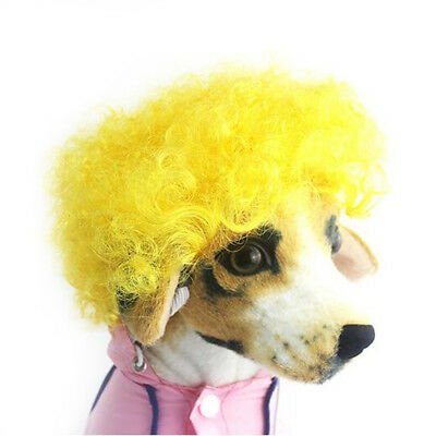 Funny Pets Dogs Beauty Mane Curly Wig Hair Cosplay Fancy Hat Cap Stylish