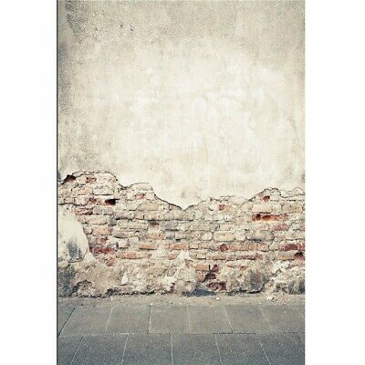 [NEW] 7x5ft Broken Brick Wall Ruins Theme Vinyl Photography Background Backdrop