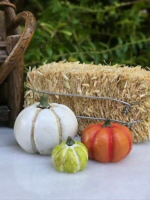 Miniature Dollhouse FAIRY GARDEN ~ Set 3 Mini HALLOWEEN Pumpkin Patch Pumpkins