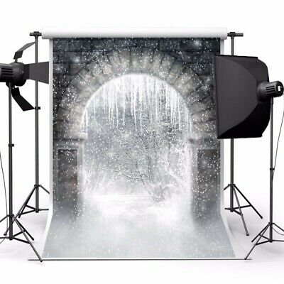 [NEW] Snow Forest Archway Magic World Theme Photography Vinyl Backdrop Studio Ba