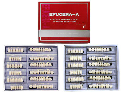 12 Sets Synthetic Polymer Acrylic Resin Denture Teeth A3 Upper + Lower Dental US