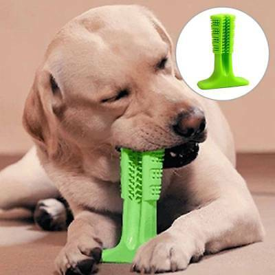 Pet Toothbrush Chew Toy Bristly Brushing Stick Dog Grind Teeth Chew Bite Toy