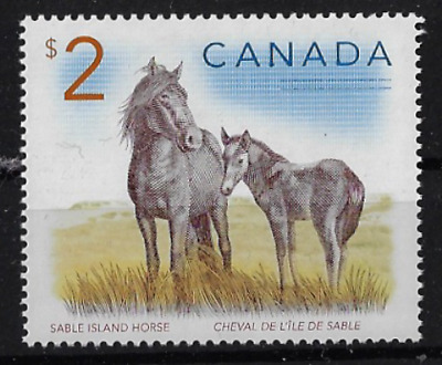 Canada Stamps — Wildlife: Sable Isand Horse #1692 — MNH