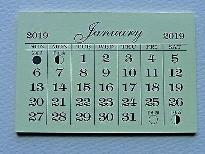 1 Mini 2019 Monthly Tear Off Good Quality Calendar Pad  Backpage Is Cardstock