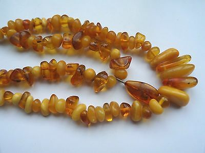 Antique Egg Yolk Genue Butterscotch Natural Baltic Amber Stone Necklace 36 g n/r