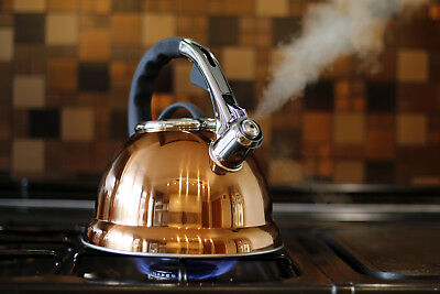 Stunning Copper Gold Colour Whistling Kettle,Copper Stove Top Kettle, 3.5 litre