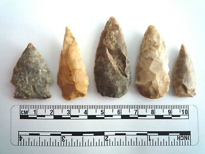 5 x Native American Arrowheads found in Texas, dating from approx 1000BC  (2246)