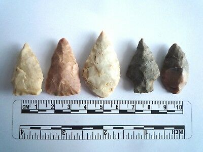5 x Native American Arrowheads found in Texas, dating from approx 1000BC  (2218)