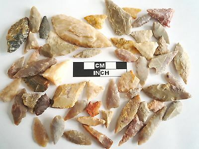 Neolithic Arrowheads x 50, Selection of Styles and Sizes - 4000BC - (0492)