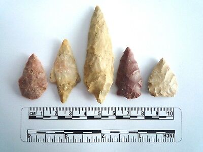 5 x Native American Arrowheads found in Texas, dating from approx 1000BC  (2231)