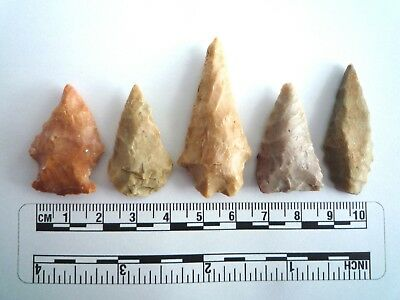 5 x Native American Arrowheads found in Texas, dating from approx 1000BC  (2243)