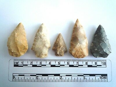 5 x Native American Arrowheads found in Texas, dating from approx 1000BC  (2205)