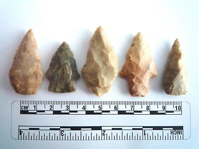 5 x Native American Arrowheads found in Texas, dating from approx 1000BC  (2225)