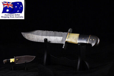 "13.5"" Damascus Bowie Style Hunting Knife RAM Horn & bone Handle FULL Tang Blade"