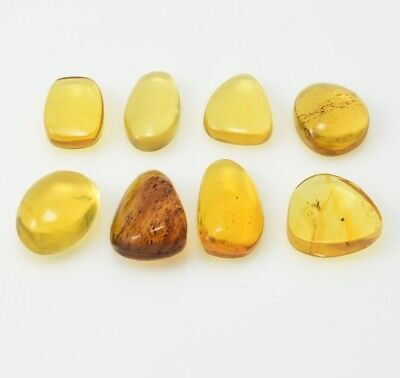 8 pieces Dominican Amber Cabochon Green Polished Stone Gem Natural (11.8 G)#379