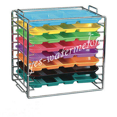 Dental Autoclavable Plastic Trays Flat Divided Separate Type Instrument 7 Colors