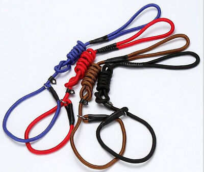 Strong Nylon Slip On Rope Dog Puppy Pet Lead Leash - No Collar Needed