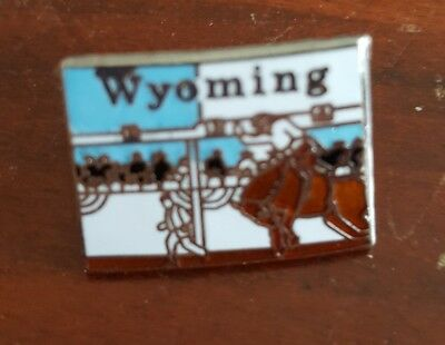 Vintage Colorful Enamel Rodeo Wyoming State Hat Lapel Pin Tie Tack WY Mafco