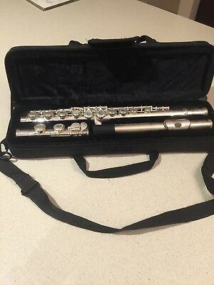 CIBAILI FLUTE with Compact Carry Case