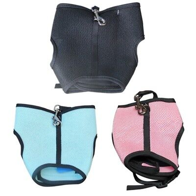 Soft Harness With Elastic Leash For Rabbit Bunny Comfortable Pet Supply New