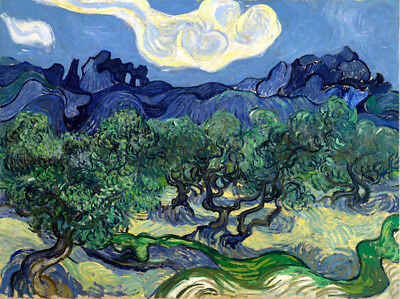 Olive Trees With the Alpilles Vincent Van Gogh Canvas Print Oil Painting /043