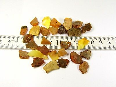 Loose Baltic Amber stones 10 grams raw natural genuine unpolished authentic 2096