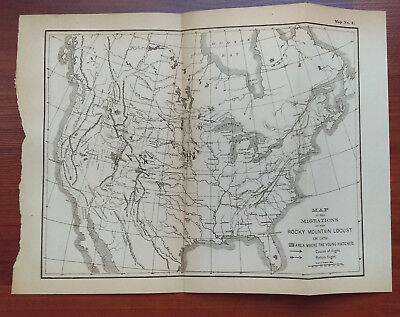 1879 United States Sketch Map Migrations of Rocky Mountain Locust  Hatched Area