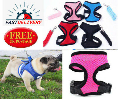Pet Vest Harness Adjustable Reflective Padded All Cat Dog Puppy Mesh Jacket S-XL