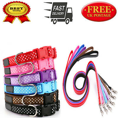 Polka Dot Dog Collar and Matching Lead Set - Puppy and Dog 6 COLOURS