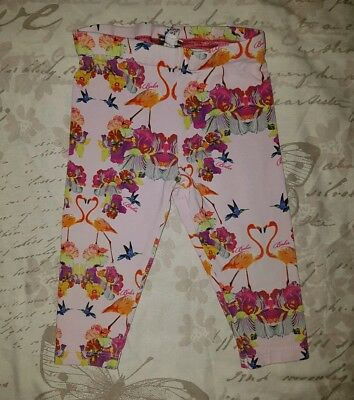 Baby Girls Ted Baker Leggings - 6-9 Months- Floral - Flamingos