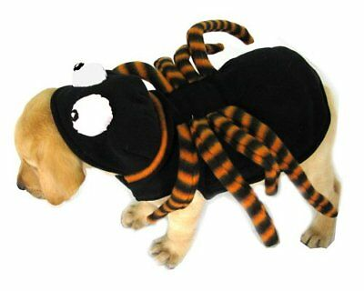 BNIP Dogs & Co Spider Costume - Size Small - 12 inch - Halloween!