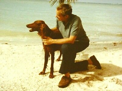 President Nixon on Beach with Dog in California Official White House Photo 1972