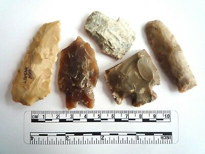 Native American Arrowheads found in Texas x 5, dating from approx 1000BC  (2250)