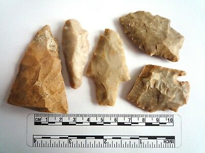 Native American Arrowheads found in Texas x 5, dating from approx 1000BC  (2263)