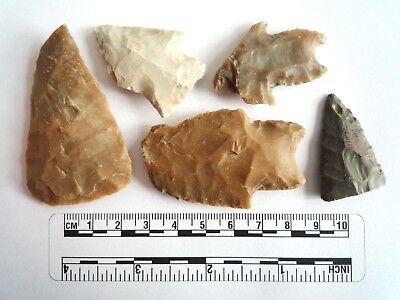 Native American Arrowheads found in Texas x 5, dating from approx 1000BC  (2280)
