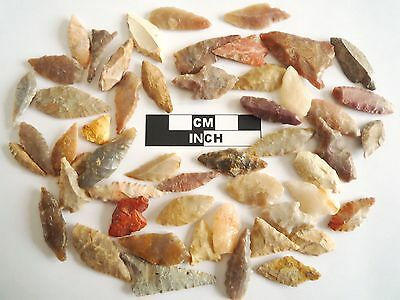 Neolithic Arrowheads x 50, Selection of Styles and Sizes - 4000BC - (0486)