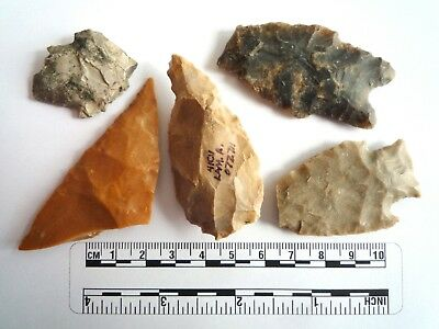 Native American Arrowheads found in Texas x 5, dating from approx 1000BC  (2266)