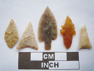 Neolithic Arrowheads x5, High Quality Selection of Styles - 4000BC - (Q099)