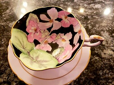 Paragon Bone China Cup And Saucer Pink Hibiscus In Black