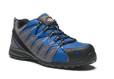 Dickies Tiber Super Safety Work Trainer Shoes Royal Blue (Sizes 3-12) Men's