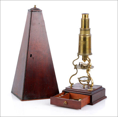 Very Rare Culpeper-Type Microscope Signed by John Bleuler. England, 1820