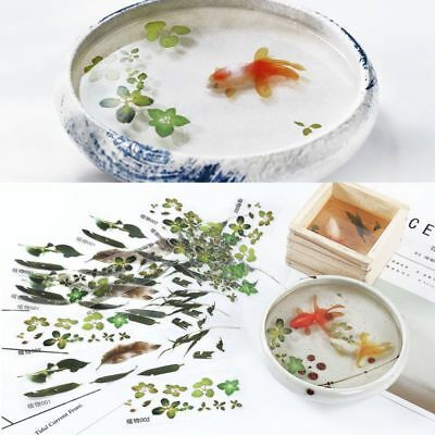 5/10Pcs 3D Leaves/Goldfish Clear Film Water Sticker For Resin Painting Jewely