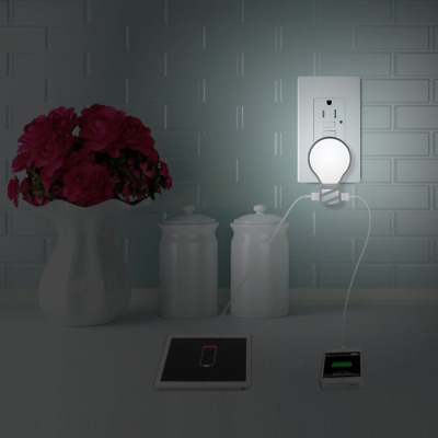 Plug in LED Night Light with Dual USB Wall Charger, Adjustable Brightness Lamp