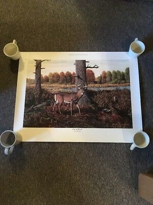 Michael Wawrzyniec Out Of Reach Signed And Numbered Deer Print