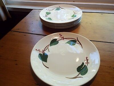 6 Southern Potteries Blue Ridge Stanhome Ivy Luncheon Plates